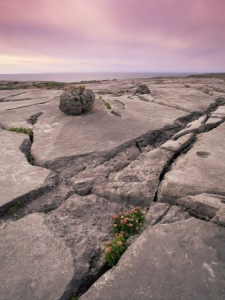 The Burren Limestone at the Cliffs of Moher
