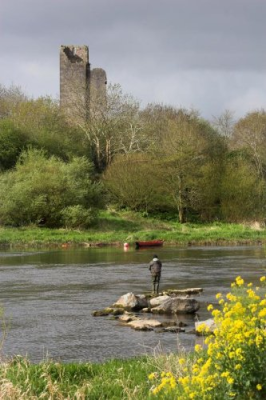 Fishing on the Banks of the River Shannon