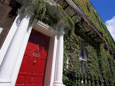 Red Door and Ivy Covered Building, St. Stephens Green, Dublin, Eire (Republic of Ireland)